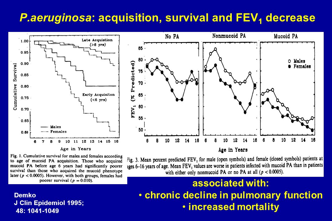 P.aeruginosa: acquisition, survival and FEV 1 decrease Demko J Clin Epidemiol 1995; 48: 1041-1049 associated with: chronic decline in pulmonary functi