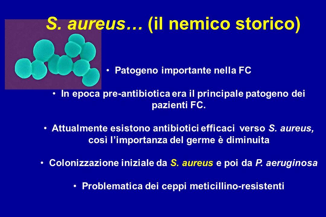 S. aureus… (il nemico storico) Patogeno importante nella FC In epoca pre-antibiotica era il principale patogeno dei pazienti FC. Attualmente esistono