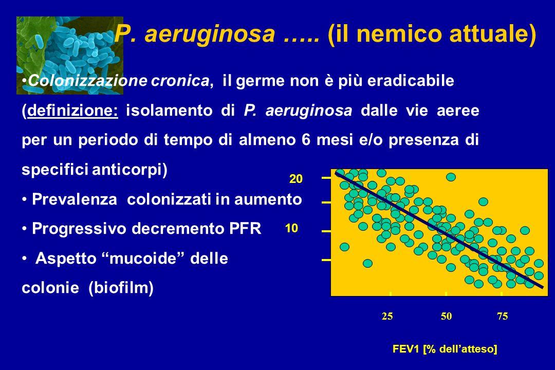 P. aeruginosa ….. (il nemico attuale) Colonizzazione cronica, il germe non è più eradicabile (definizione: isolamento di P. aeruginosa dalle vie aeree