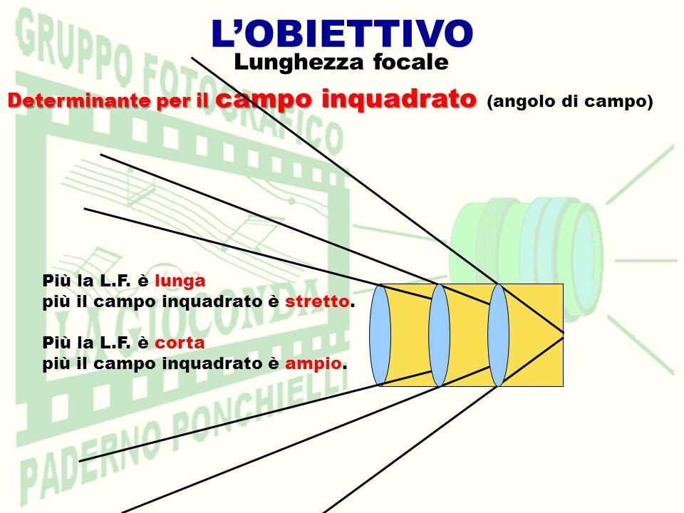 LOBIETTIVO Lunghezza focale Determinante per il campo inquadrato Determinante per il campo inquadrato (angolo di campo) Più la L.F. è lunga più il cam
