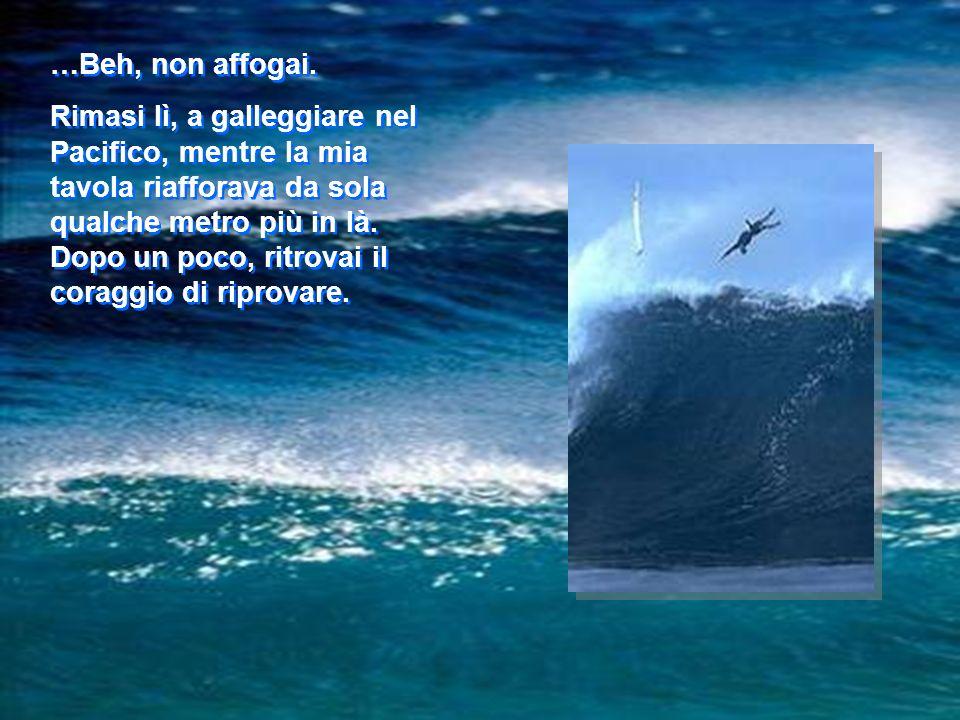 Ecco che unonda finalmente sollevò il mio surf e davanti a me sembrò aprirsi un baratro nel mare. La tavola si diresse verso il basso e poi dentro il