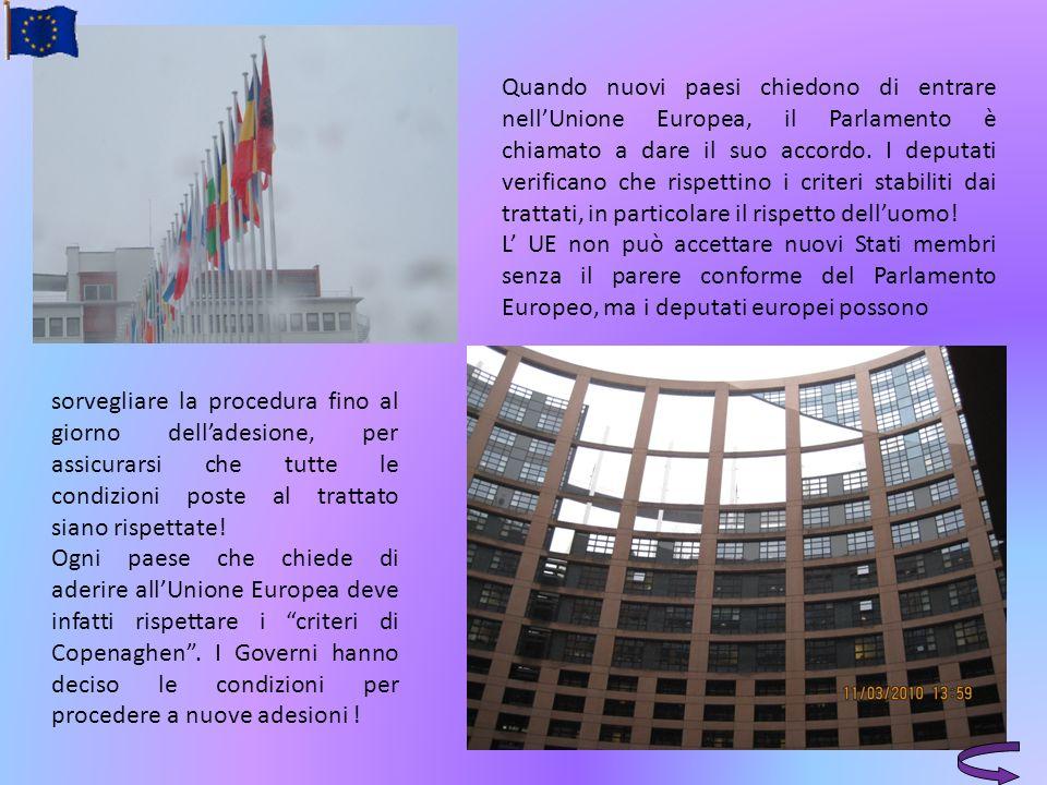 sorvegliare la procedura fino al giorno delladesione, per assicurarsi che tutte le condizioni poste al trattato siano rispettate! Ogni paese che chied