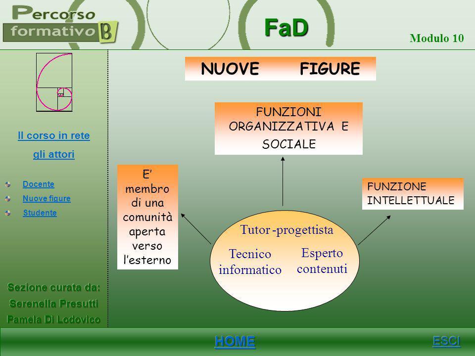 FaD Modulo 10 DOCENTE Docente Funge da guida,consulente,consigliere E membro di una comunità aperta verso lesterno Incentiva al dibattito ed alla crit