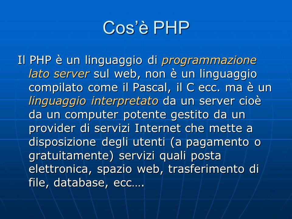 Larchitettura server-client Il server è un computer potente gestito da un provider di servizi internet che mette a disposizione servizi.
