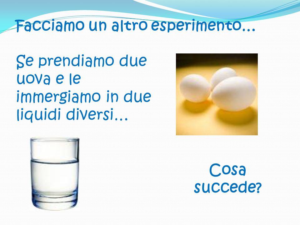 Facciamo un altro esperimento… Se prendiamo due uova e le immergiamo in due liquidi diversi… Cosa succede?