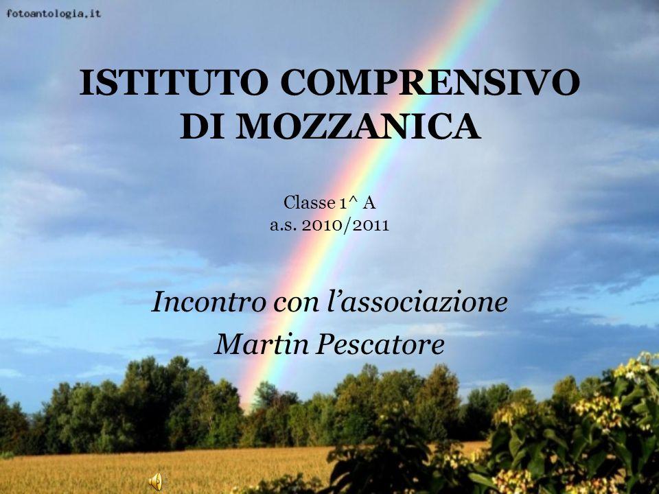 ISTITUTO COMPRENSIVO DI MOZZANICA Classe 1^ A a.s. 2010/2011 Incontro con lassociazione Martin Pescatore