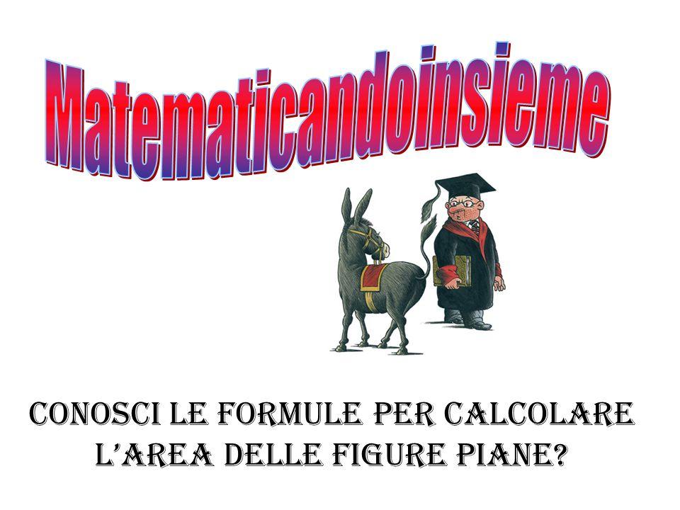 Conosci le formule per calcolare larea delle figure piane?