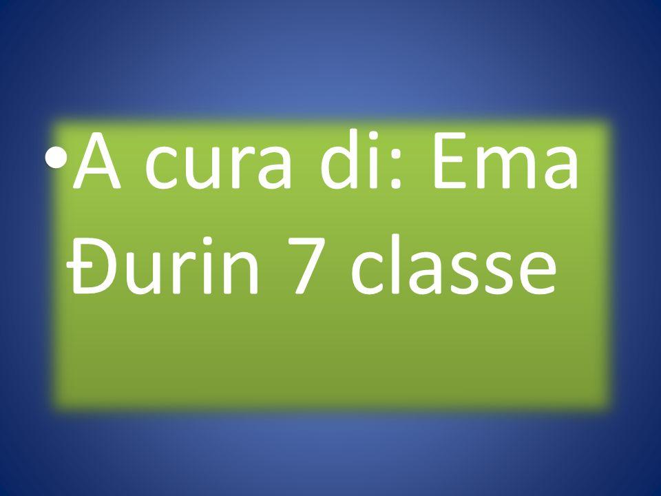 A cura di: Ema Đurin 7 classe