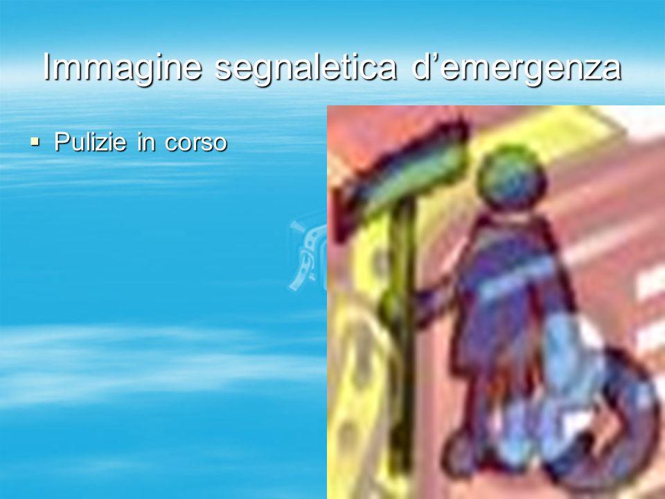 Immagine segnaletica demergenza Pulizie in corso Pulizie in corso