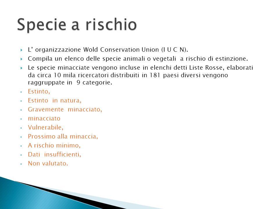 L organizzazione Wold Conservation Union (I U C N). Compila un elenco delle specie animali o vegetali a rischio di estinzione. Le specie minacciate ve