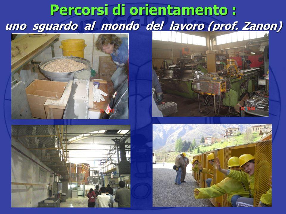 Percorsi di orientamento : uno sguardo al mondo del lavoro (prof. Zanon) Visita ad una falegnameria locale Visita ad una carpenteria Visita alla Elett