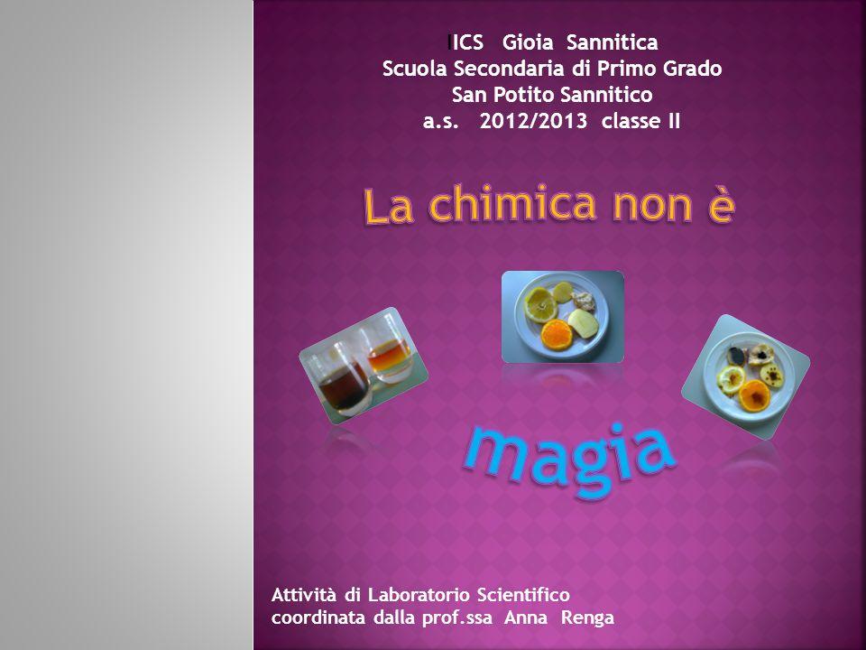 IICS Gioia Sannitica Scuola Secondaria di Primo Grado San Potito Sannitico a.s. 2012/2013 classe II Attività di Laboratorio Scientifico coordinata dal