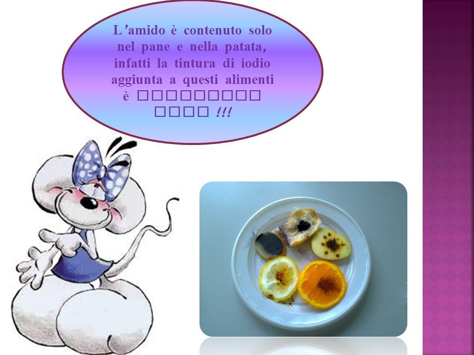 L amido è contenuto solo nel pane e nella patata, infatti la tintura di iodio aggiunta a questi alimenti è diventata nera !!!