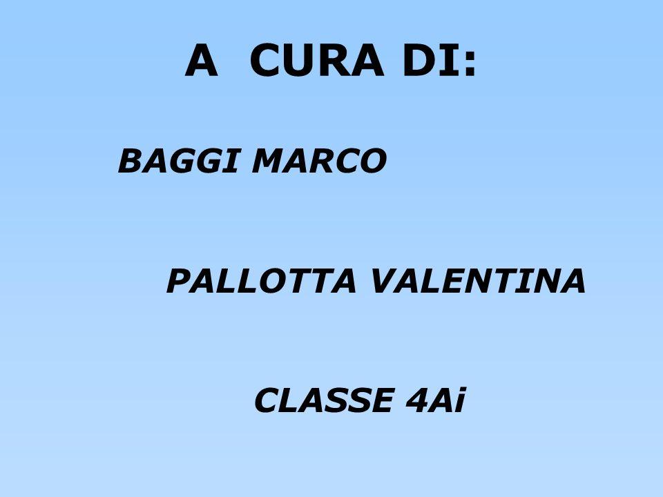 BAGGI MARCO PALLOTTA VALENTINA CLASSE 4Ai A CURA DI: