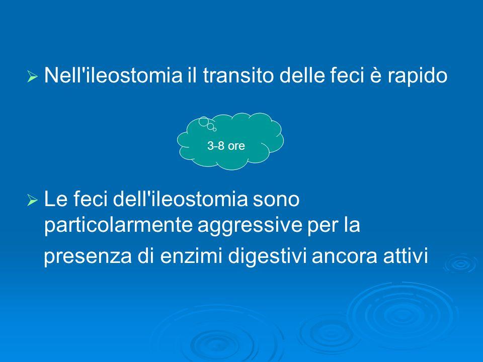 Nell'ileostomia il transito delle feci è rapido Le feci dell'ileostomia sono particolarmente aggressive per la presenza di enzimi digestivi ancora att