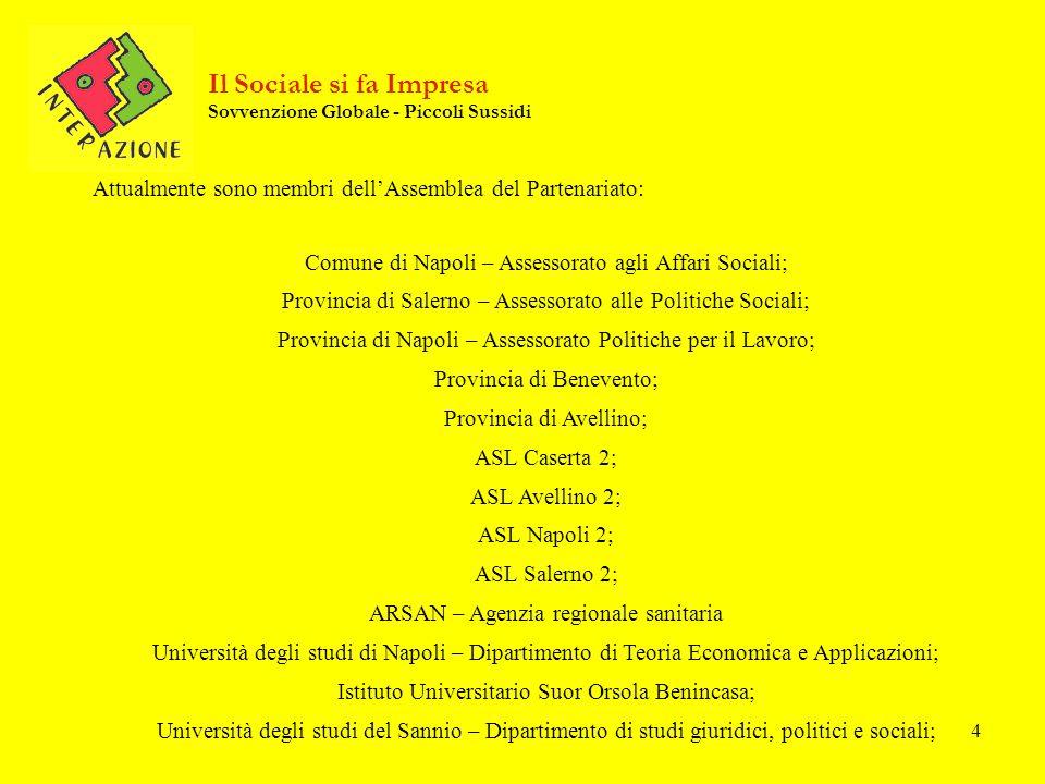 4 Attualmente sono membri dellAssemblea del Partenariato: Comune di Napoli – Assessorato agli Affari Sociali; Provincia di Salerno – Assessorato alle