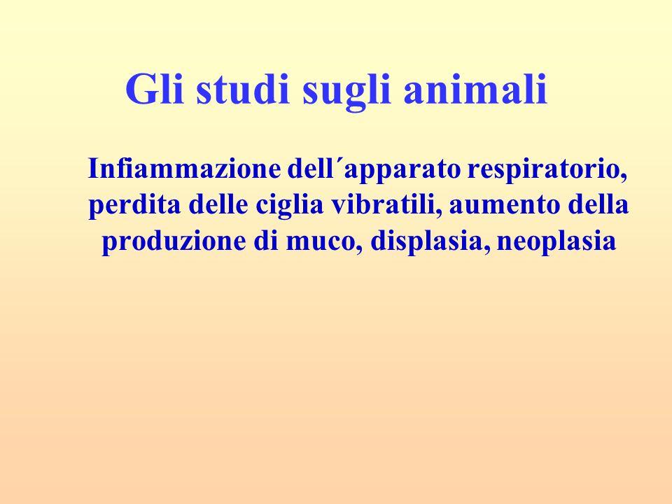 Gli studi sugli animali Infiammazione dell´apparato respiratorio, perdita delle ciglia vibratili, aumento della produzione di muco, displasia, neoplas
