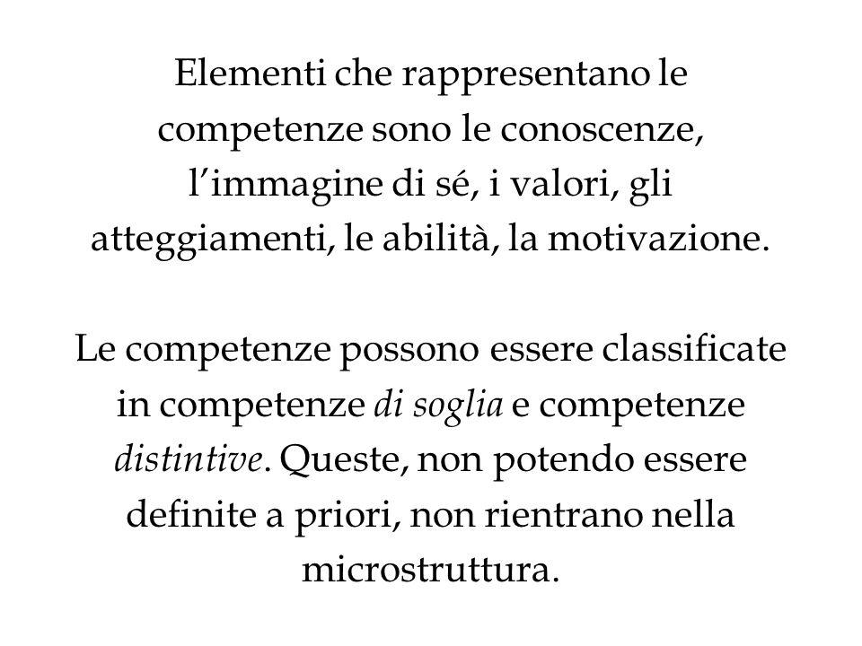 Elementi che rappresentano le competenze sono le conoscenze, limmagine di sé, i valori, gli atteggiamenti, le abilità, la motivazione. Le competenze p
