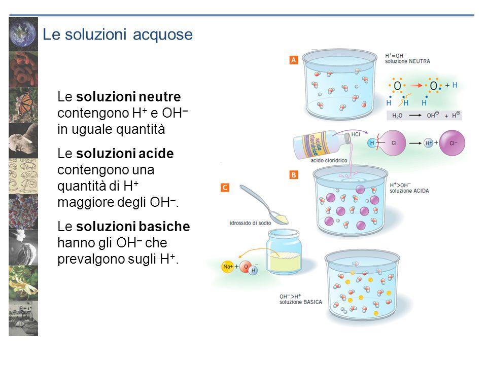Le soluzioni acquose Le soluzioni neutre contengono H + e OH – in uguale quantità Le soluzioni acide contengono una quantità di H + maggiore degli OH