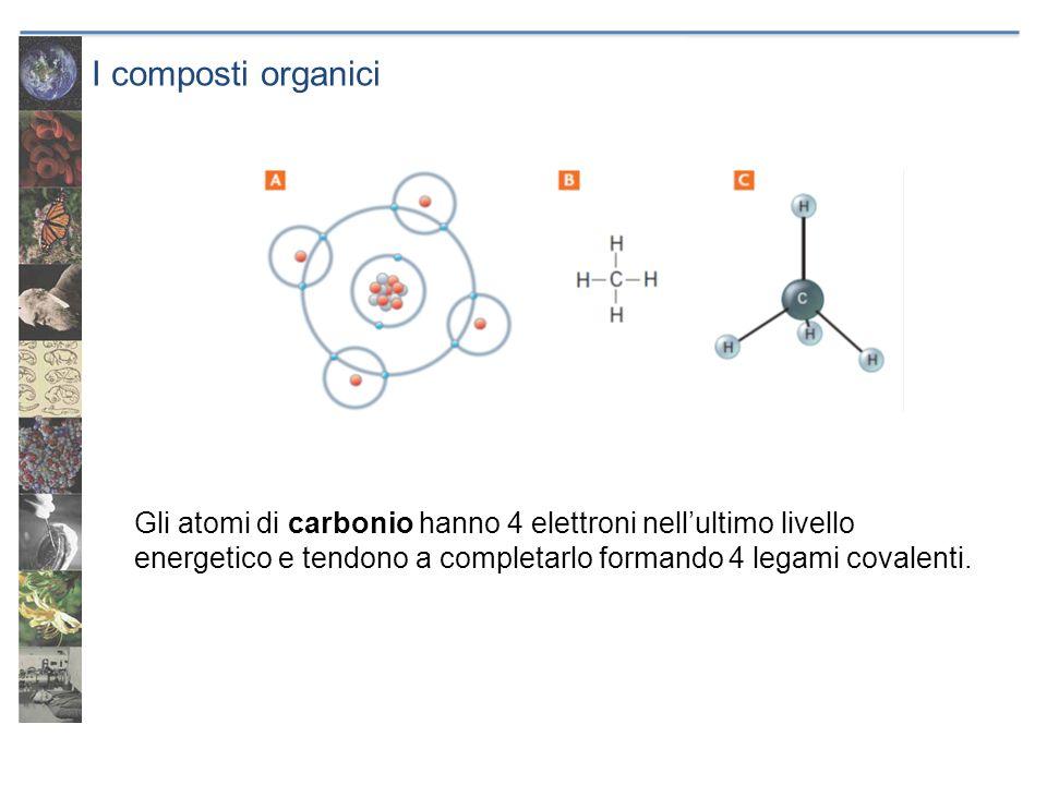 I composti organici Gli atomi di carbonio hanno 4 elettroni nellultimo livello energetico e tendono a completarlo formando 4 legami covalenti.