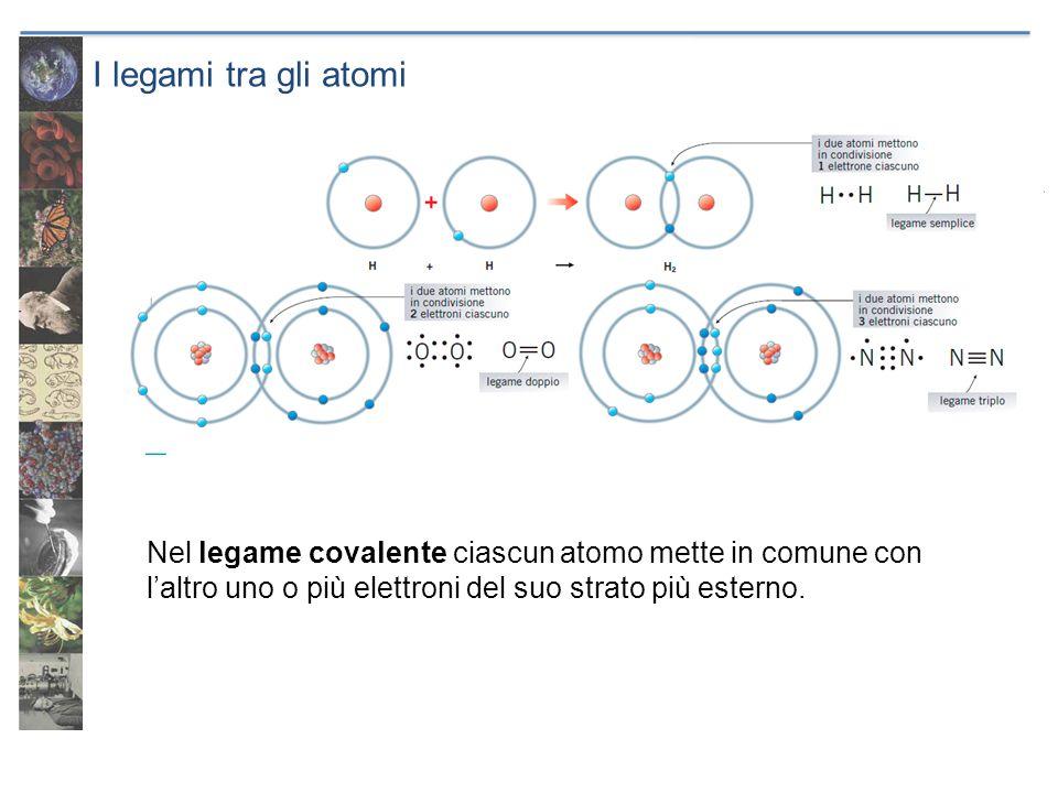 I legami tra gli atomi Nel legame covalente ciascun atomo mette in comune con laltro uno o più elettroni del suo strato più esterno.