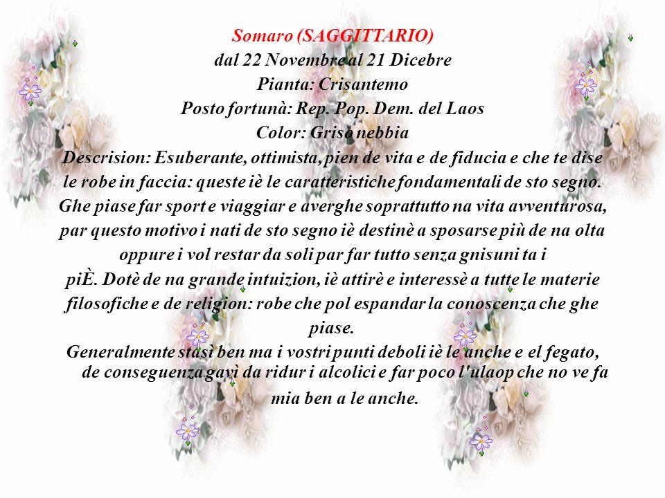 Somaro (SAGGITTARIO) dal 22 Novembre al 21 Dicebre Pianta: Crisantemo Posto fortunà: Rep.