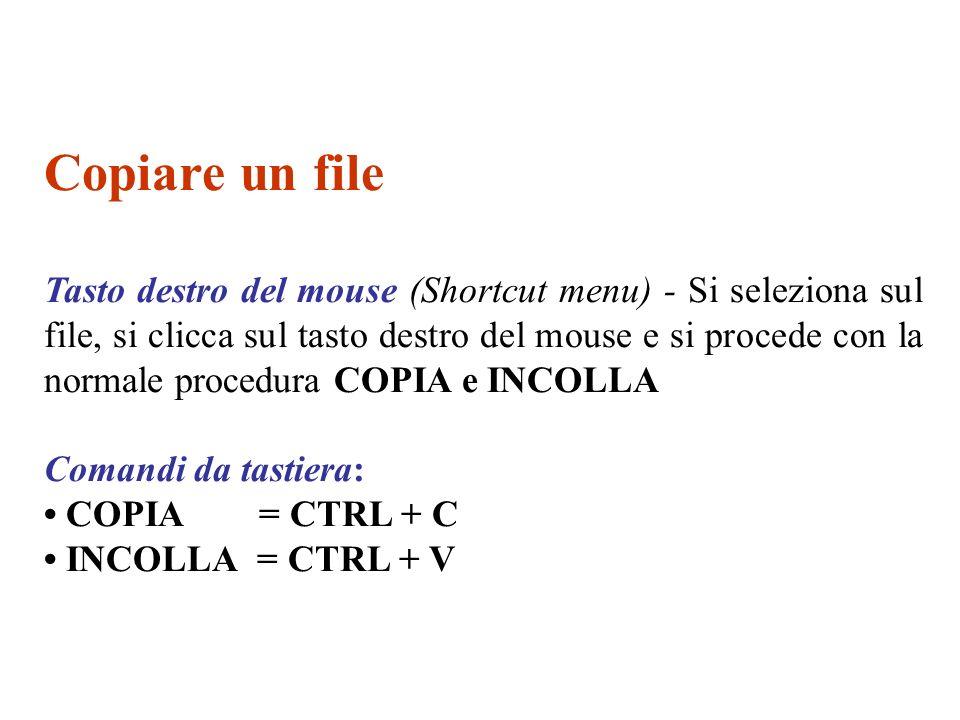 Copiare un file Tasto destro del mouse (Shortcut menu) - Si seleziona sul file, si clicca sul tasto destro del mouse e si procede con la normale proce