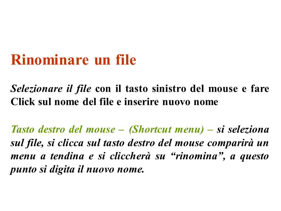 Rinominare un file Selezionare il file con il tasto sinistro del mouse e fare Click sul nome del file e inserire nuovo nome Tasto destro del mouse – (