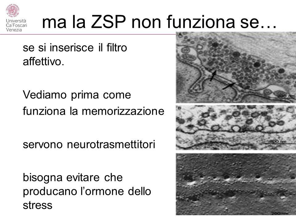ma la ZSP non funziona se… se si inserisce il filtro affettivo.