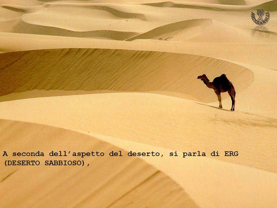 A seconda dellaspetto del deserto, si parla di ERG (DESERTO SABBIOSO),