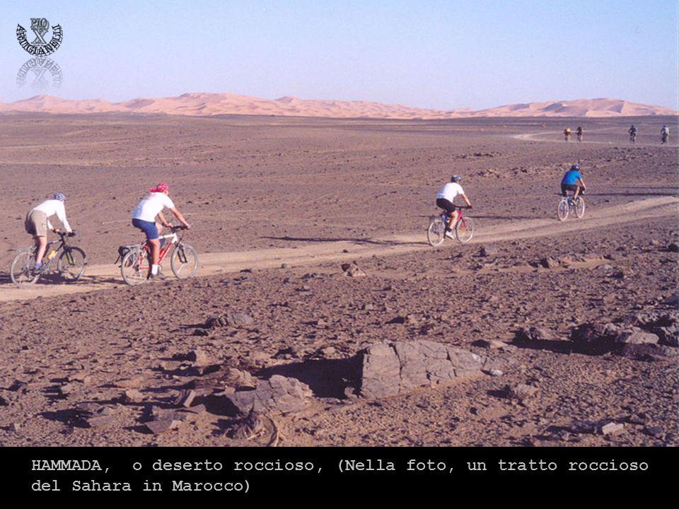 HAMMADA, o deserto roccioso, (Nella foto, un tratto roccioso del Sahara in Marocco)