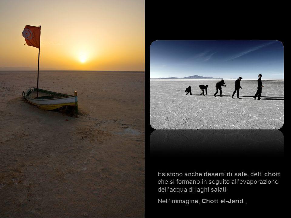 Esistono anche deserti di sale, detti chott, che si formano in seguito allevaporazione dellacqua di laghi salati. Nellimmagine, Chott el-Jerid, nel su