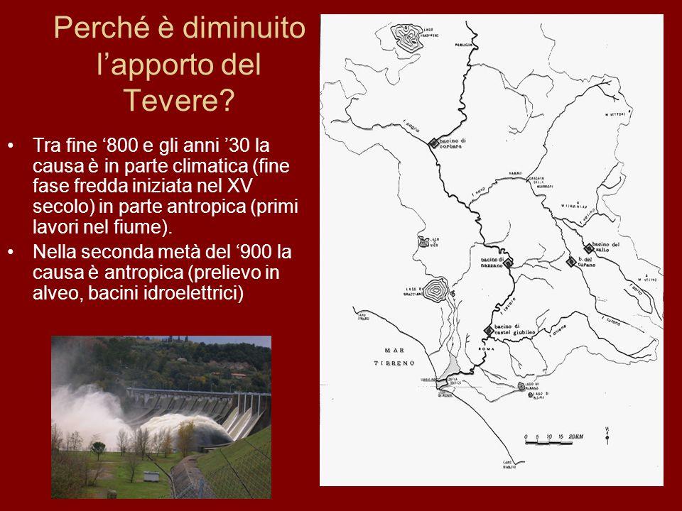 Perché è diminuito lapporto del Tevere? Tra fine 800 e gli anni 30 la causa è in parte climatica (fine fase fredda iniziata nel XV secolo) in parte an