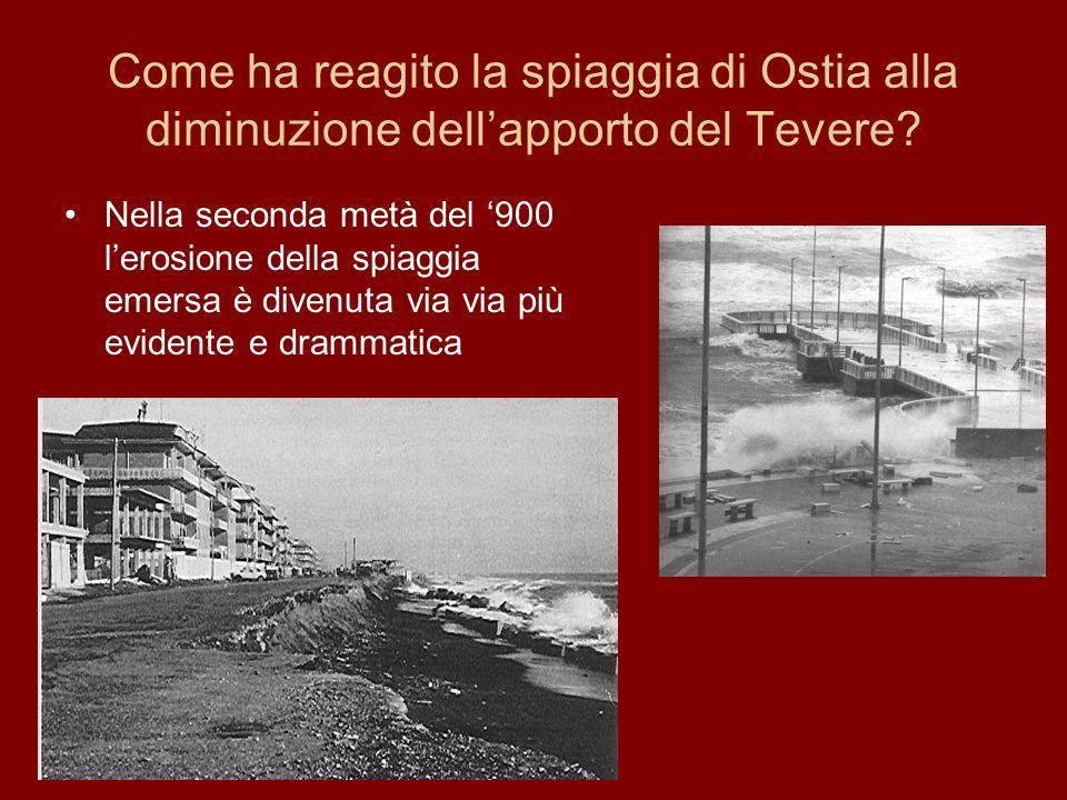 Come ha reagito la spiaggia di Ostia alla diminuzione dellapporto del Tevere? Nella seconda metà del 900 lerosione della spiaggia emersa è divenuta vi