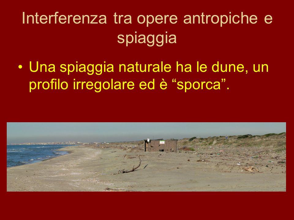 Interferenza tra opere antropiche e spiaggia Una spiaggia naturale ha le dune, un profilo irregolare ed è sporca.