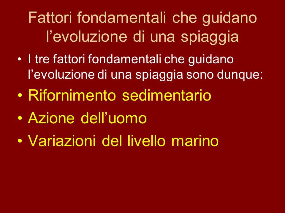 Fattori fondamentali che guidano levoluzione di una spiaggia I tre fattori fondamentali che guidano levoluzione di una spiaggia sono dunque: Rifornime