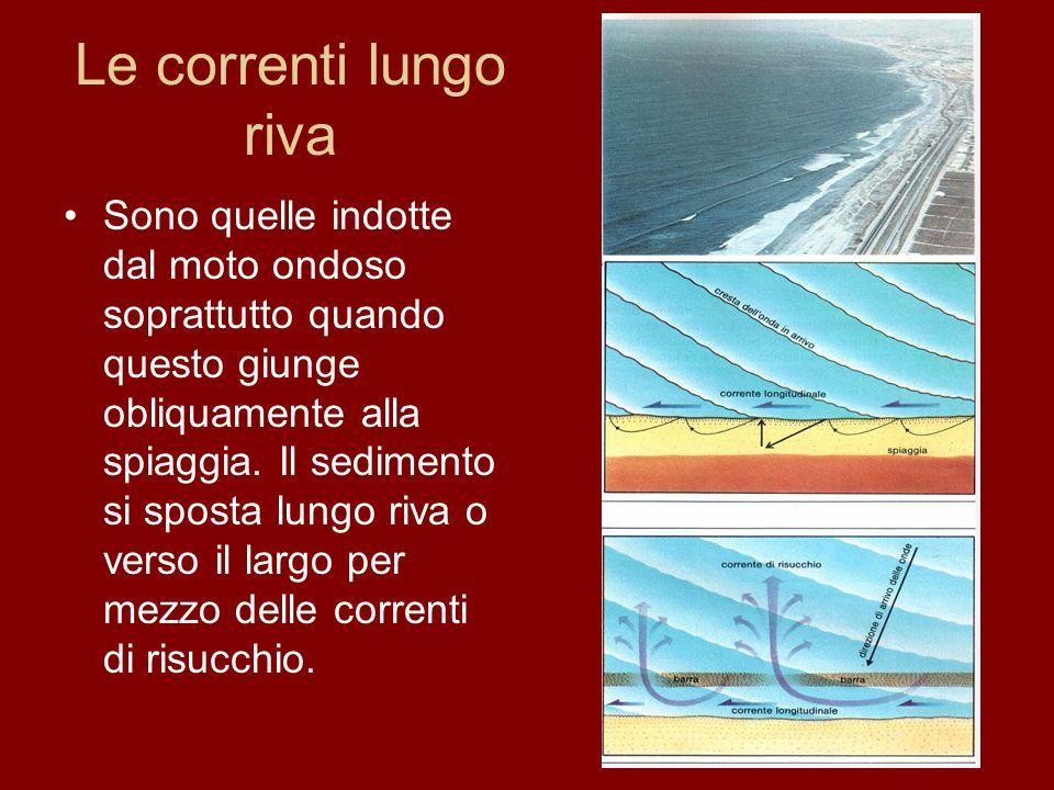 Le nostre spiagge Le spiagge di Ostia, Fiumicino e Fregene appartengono tutte al delta del Tevere e i loro sedimenti derivano esclusivamente dagli apporti del fiume.