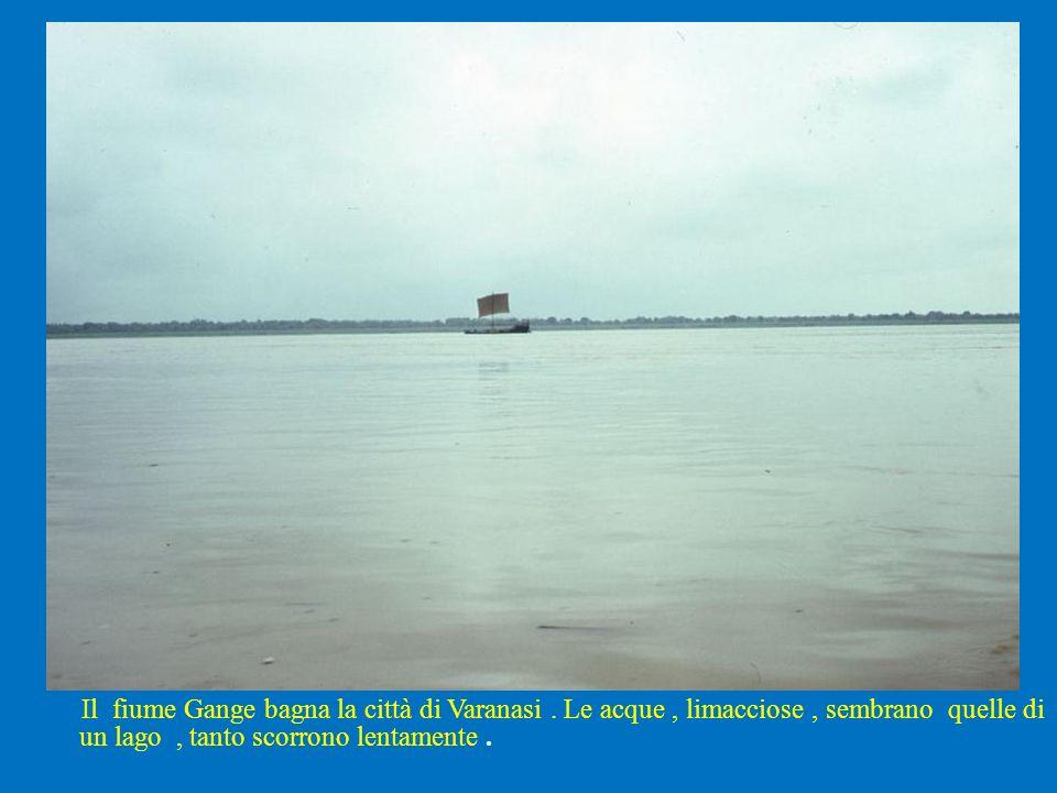 Il fiume Gange bagna la città di Varanasi. Le acque, limacciose, sembrano quelle di un lago, tanto scorrono lentamente.