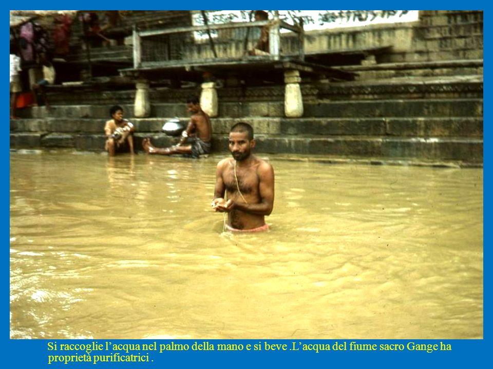 Si raccoglie lacqua nel palmo della mano e si beve.Lacqua del fiume sacro Gange ha proprietà purificatrici.