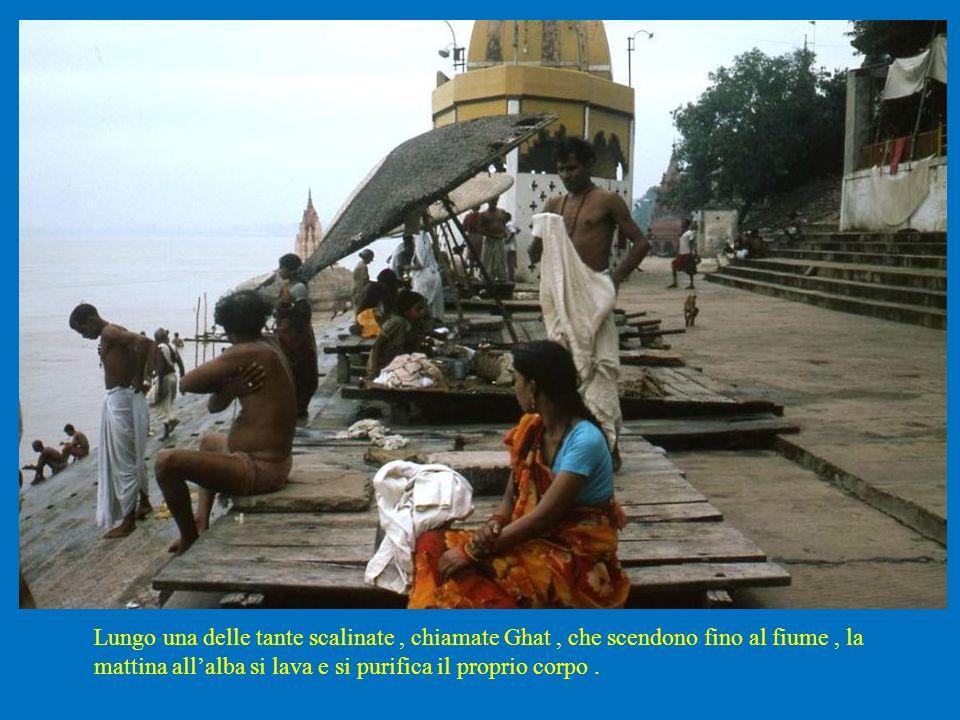 Lungo una delle tante scalinate, chiamate Ghat, che scendono fino al fiume, la mattina allalba si lava e si purifica il proprio corpo.