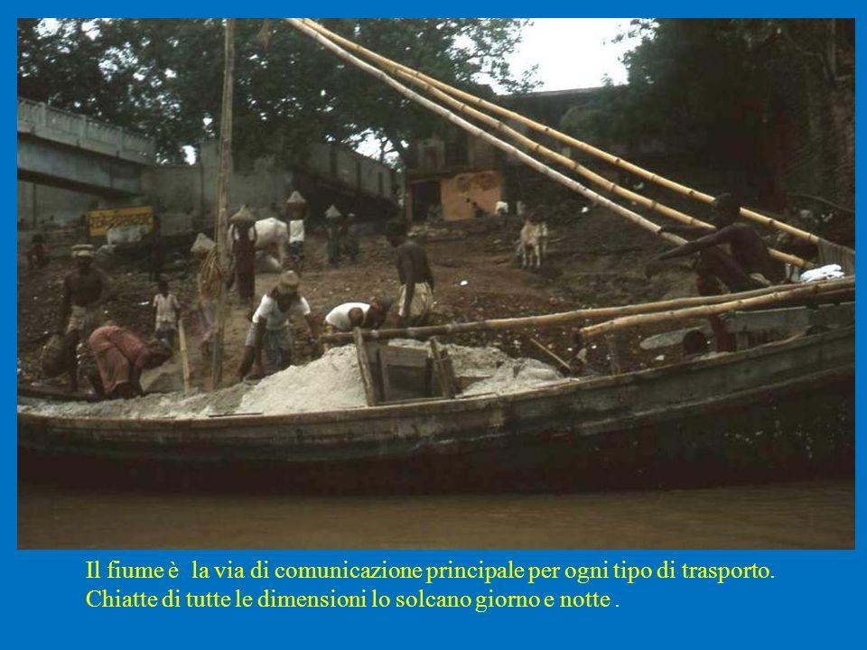 Il fiume è la via di comunicazione principale per ogni tipo di trasporto. Chiatte di tutte le dimensioni lo solcano giorno e notte.
