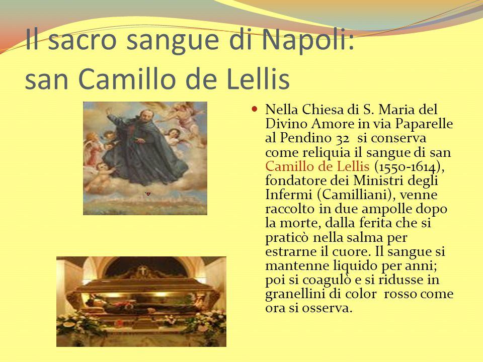 Il sacro sangue di Napoli: san Camillo de Lellis Nella Chiesa di S. Maria del Divino Amore in via Paparelle al Pendino 32 si conserva come reliquia il