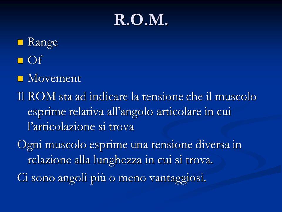 R.O.M. Range Range Of Of Movement Movement Il ROM sta ad indicare la tensione che il muscolo esprime relativa allangolo articolare in cui larticolazio