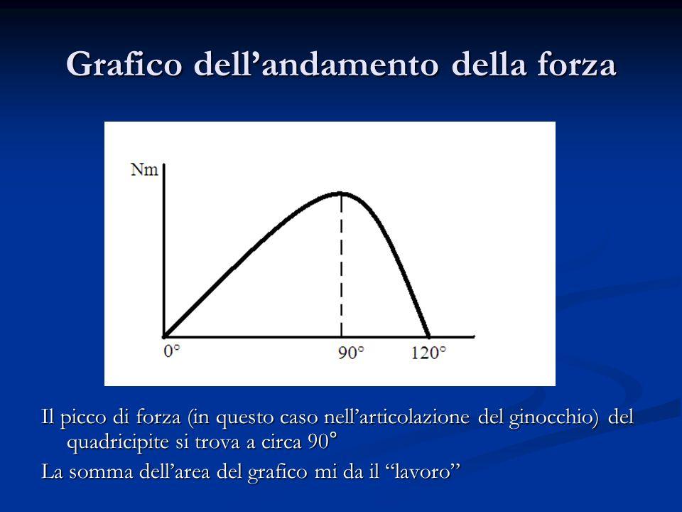 Grafico dellandamento della forza Il picco di forza (in questo caso nellarticolazione del ginocchio) del quadricipite si trova a circa 90° La somma de