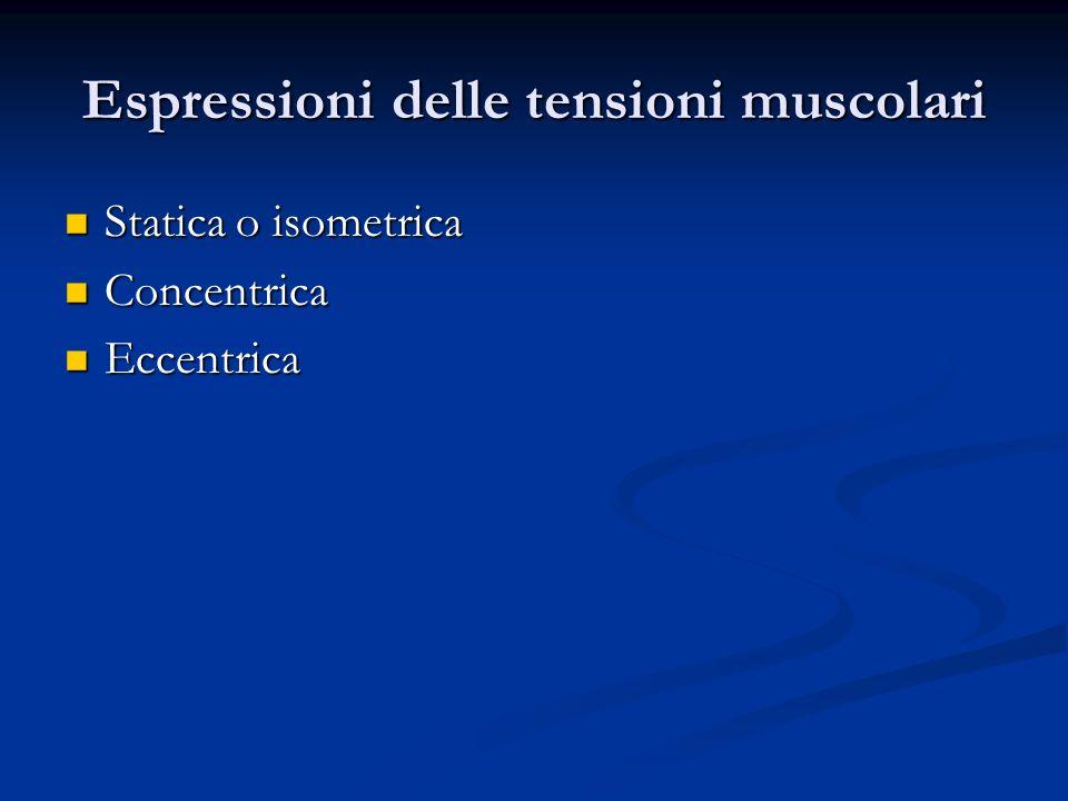 Espressioni delle tensioni muscolari Statica o isometrica Statica o isometrica Concentrica Concentrica Eccentrica Eccentrica