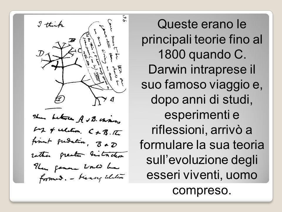 Queste erano le principali teorie fino al 1800 quando C. Darwin intraprese il suo famoso viaggio e, dopo anni di studi, esperimenti e riflessioni, arr
