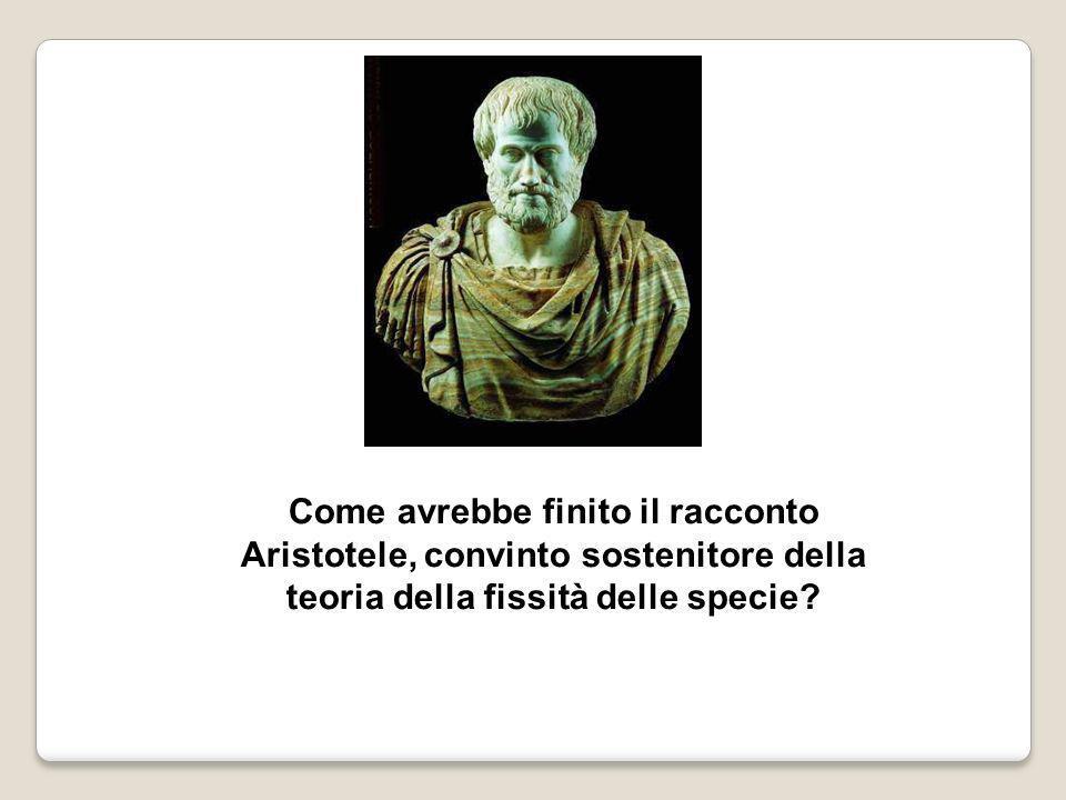 Come avrebbe finito il racconto Aristotele, convinto sostenitore della teoria della fissità delle specie?
