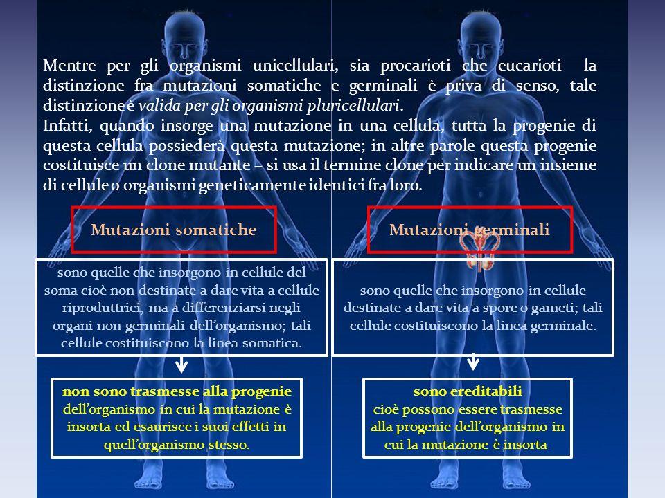 sono quelle che insorgono in cellule del soma cioè non destinate a dare vita a cellule riproduttrici, ma a differenziarsi negli organi non germinali d