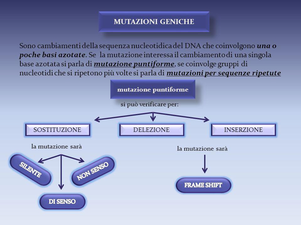 Sono cambiamenti della sequenza nucleotidica del DNA che coinvolgono una o poche basi azotate. Se la mutazione interessa il cambiamento di una singola