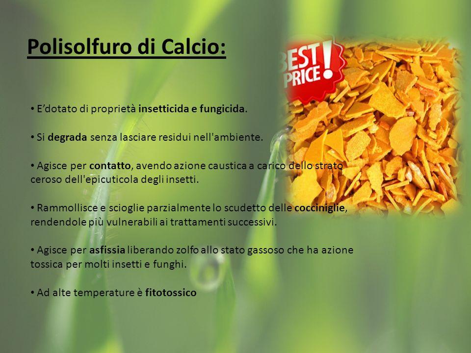 Polisolfuro di Calcio: Edotato di proprietà insetticida e fungicida.